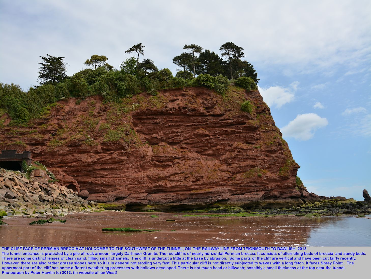Southwestern Hole Head near Smugglers Lane - a closer view of the cliff of Teignmouth Breccia,   Holcombe, near Dawlish, Devon, Peter Hawtin photograph, 2013