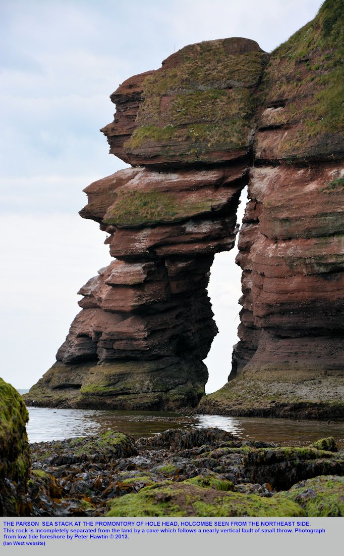 The Parson sea stack at Hole Head, near Dawlish, Devon, seen from the northeast