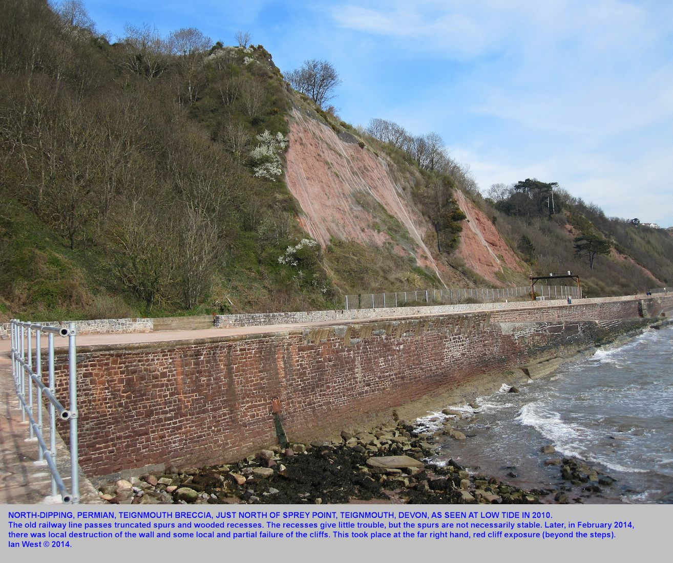 Cliffs of Teignmouth Breccia at the back of the railway line, just north of Sprey Point, between Teignmouth and Dawlish, Devon, photograph 2010