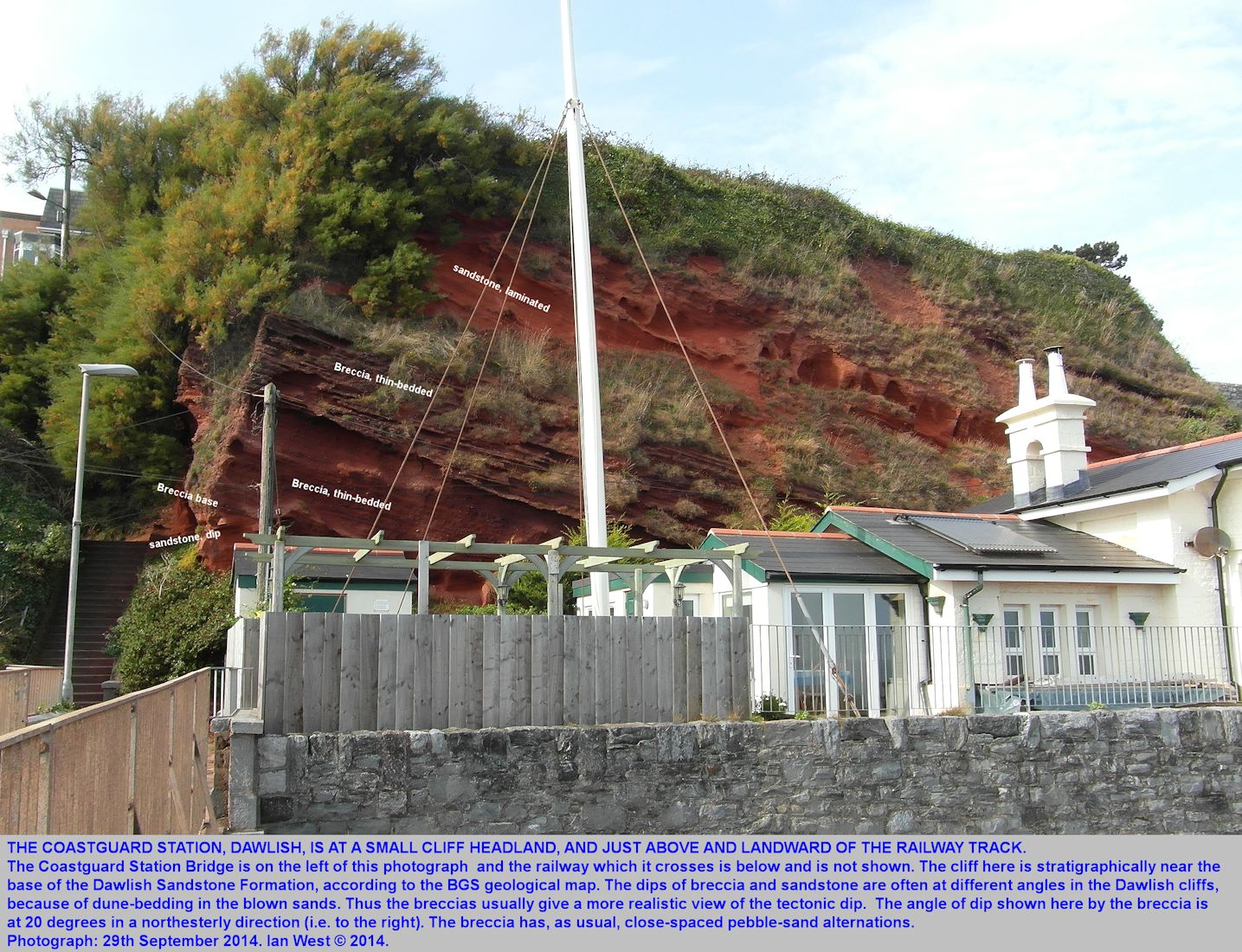 Northeasterly dipping breccia and sandstone of the Permian, Dawlish Sandstone Formation at the Coastguard Station, Dawlish, Devon, 29th September 2014