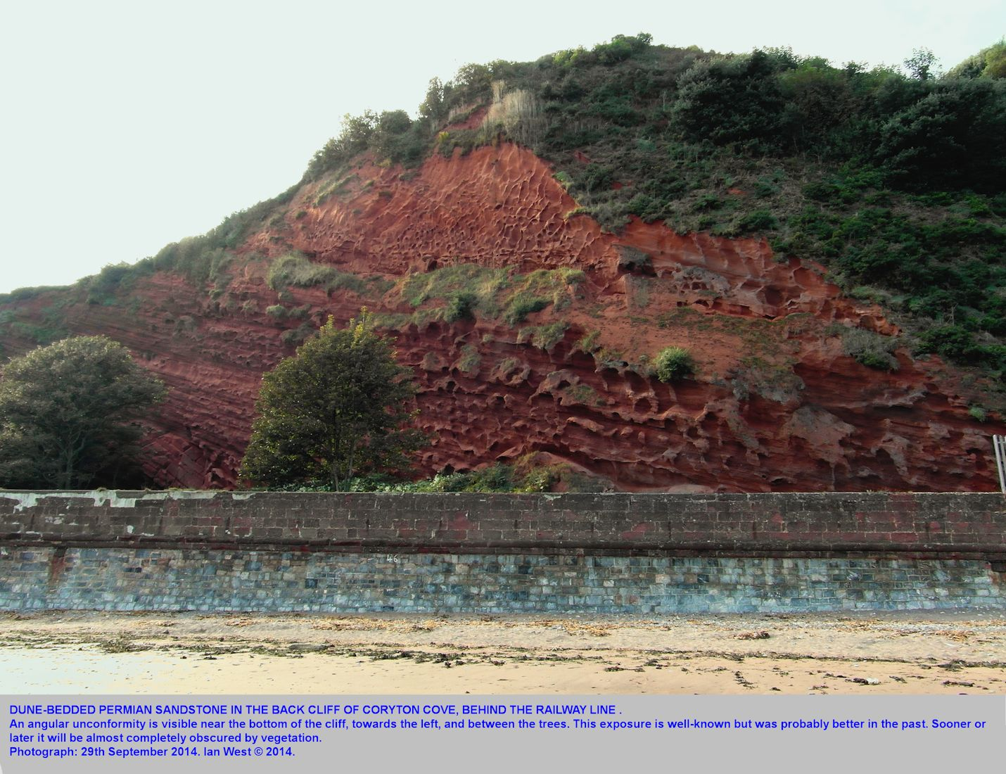 An unconformable relationship of Permian sandstone, resulting from sand dune bedding, back of Coryton's Cove, Dawlish,  Devon, 2014