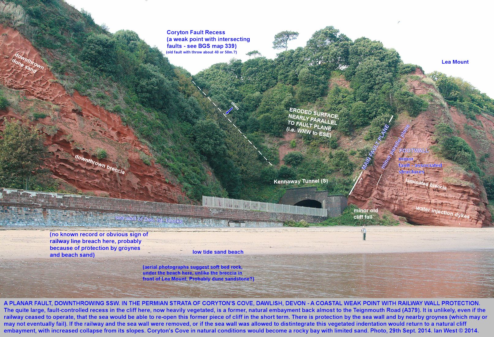A normal fault in the northern part of Coryton's Cove, Dawlish, Devon  and downthrowing to the south at about 35m and producing a recess in the cliff, 29th September 2014
