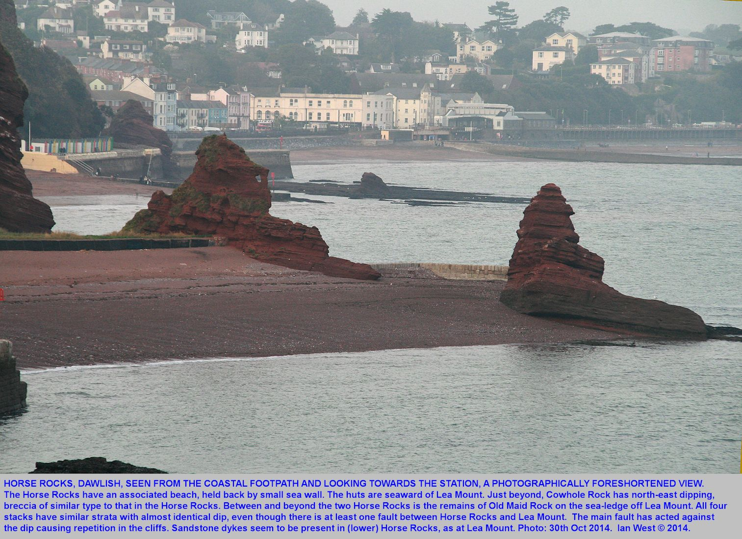 Horse Rocks, of Teignmouth Breccia, seen from the coastal footpath and looking from south to north, Dawlish,  Devon, 30th October 2014