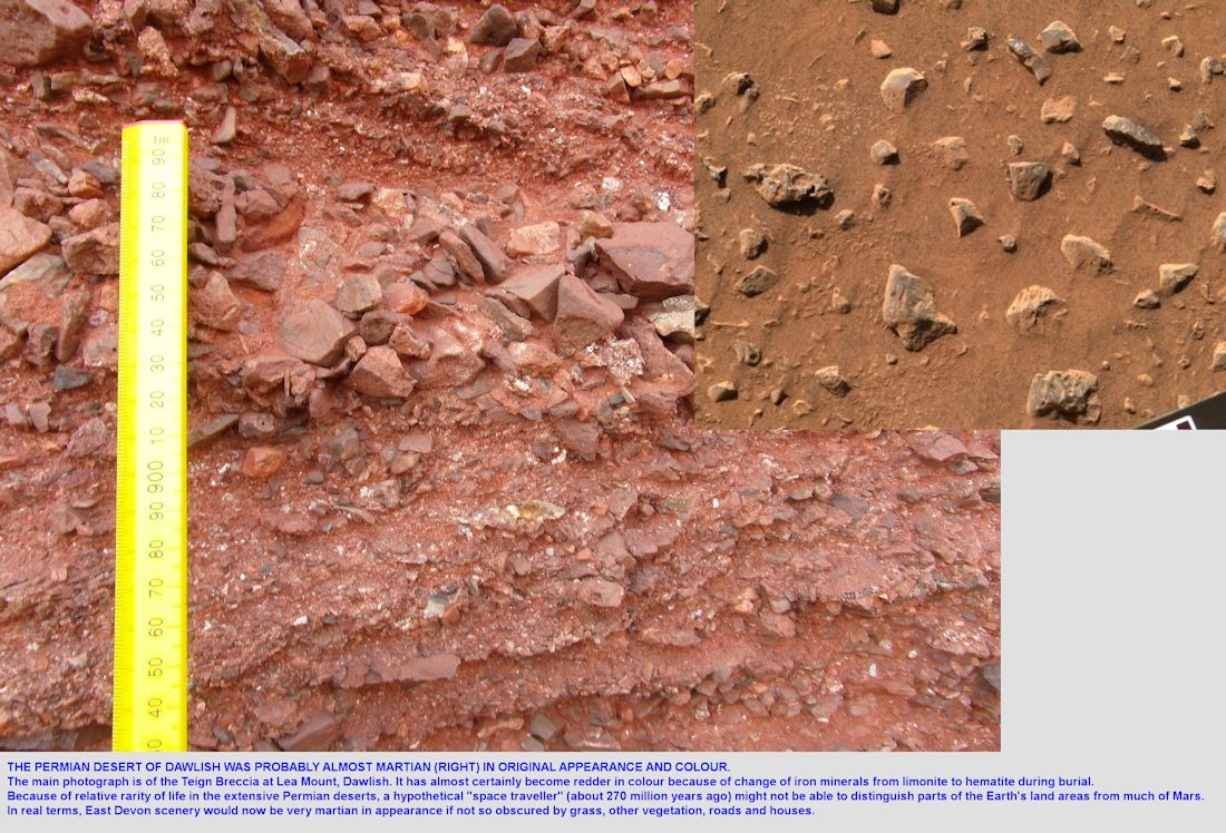 Mars - type of desert breccia seen in the Permian strata, at Lea Mount, Dawlish, Devon, southern England, 2014