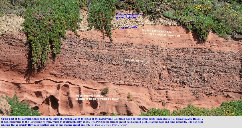 Dawlish Sands in the cliffs of Dawlish Bay, Devon, overlain unconformably by a Pleistocene, terrace gravel deposit