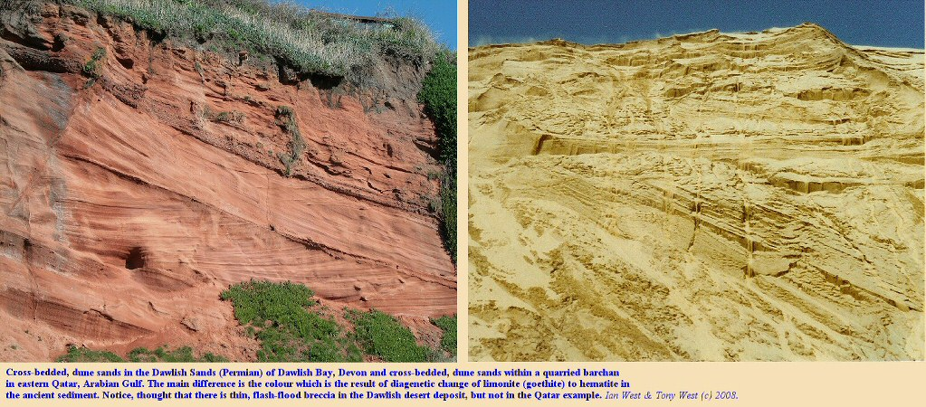 Comparison of Permian sand dune structures of Dawlish Bay with those of a large, Barchan sand dune of eastern Qatar