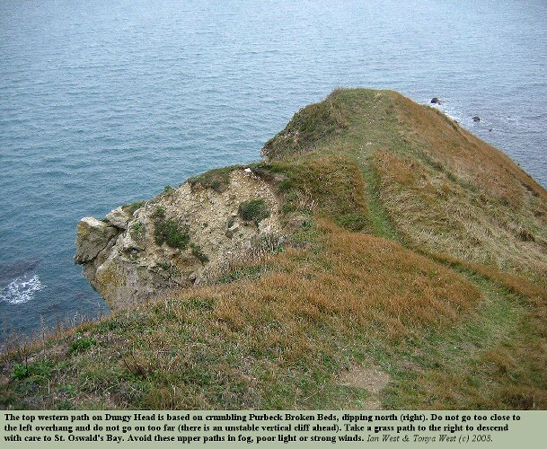 The top grass paths at the western part of Dungy Head, near Lulworth Cove, Dorset, 2008