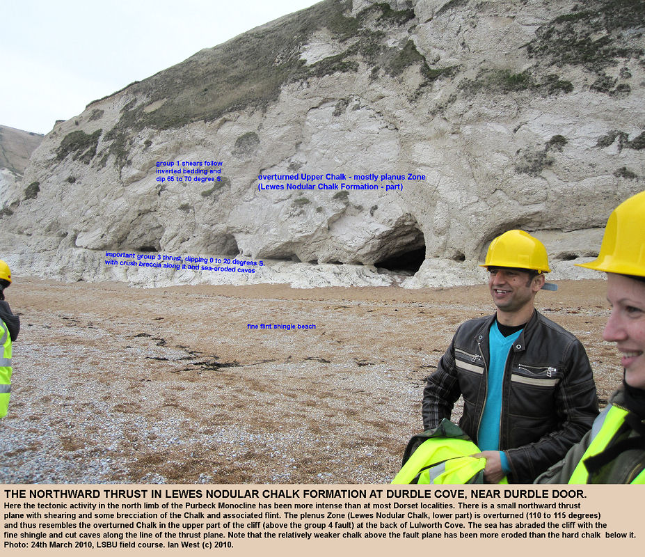 Caves have been eroded into the Lewes Nodular Chalk (plenus Zone) at a thrust plane at Durdle Cove, near Durdle Door, Lulworth Cove, Dorset