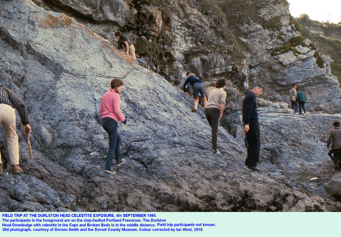 The Durlston Downbulge at Durlston Head, Dorset, old photograph, 4th September 1965