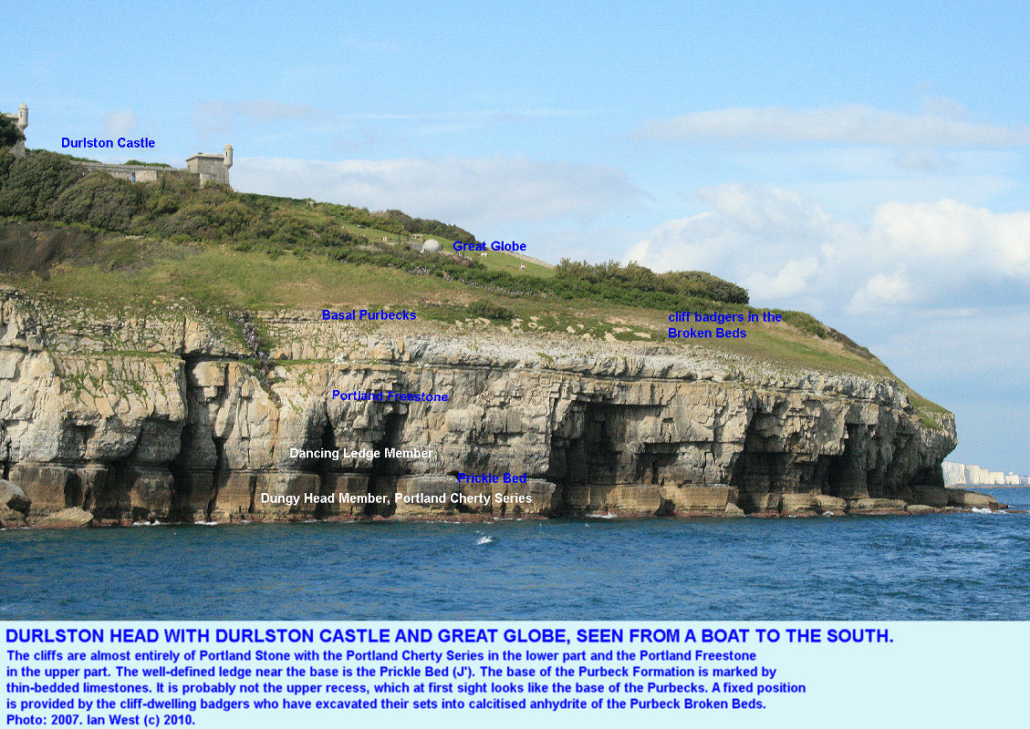 The cliffs at Durlston Head, Dorset, seen from the south, and with Badger sets in the calcitised anhydrite of the Purbeck Broken Beds