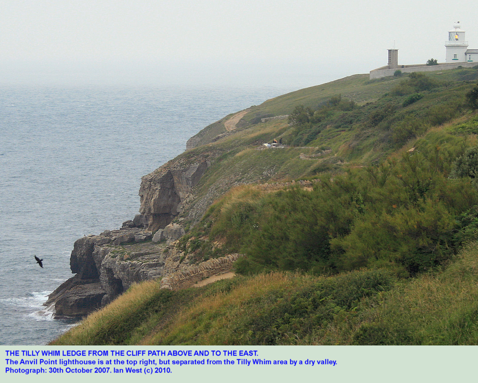 The Tilly Whim quarrying ledge from the cliff path to the east, near Durlston Head, Swanage, Dorset
