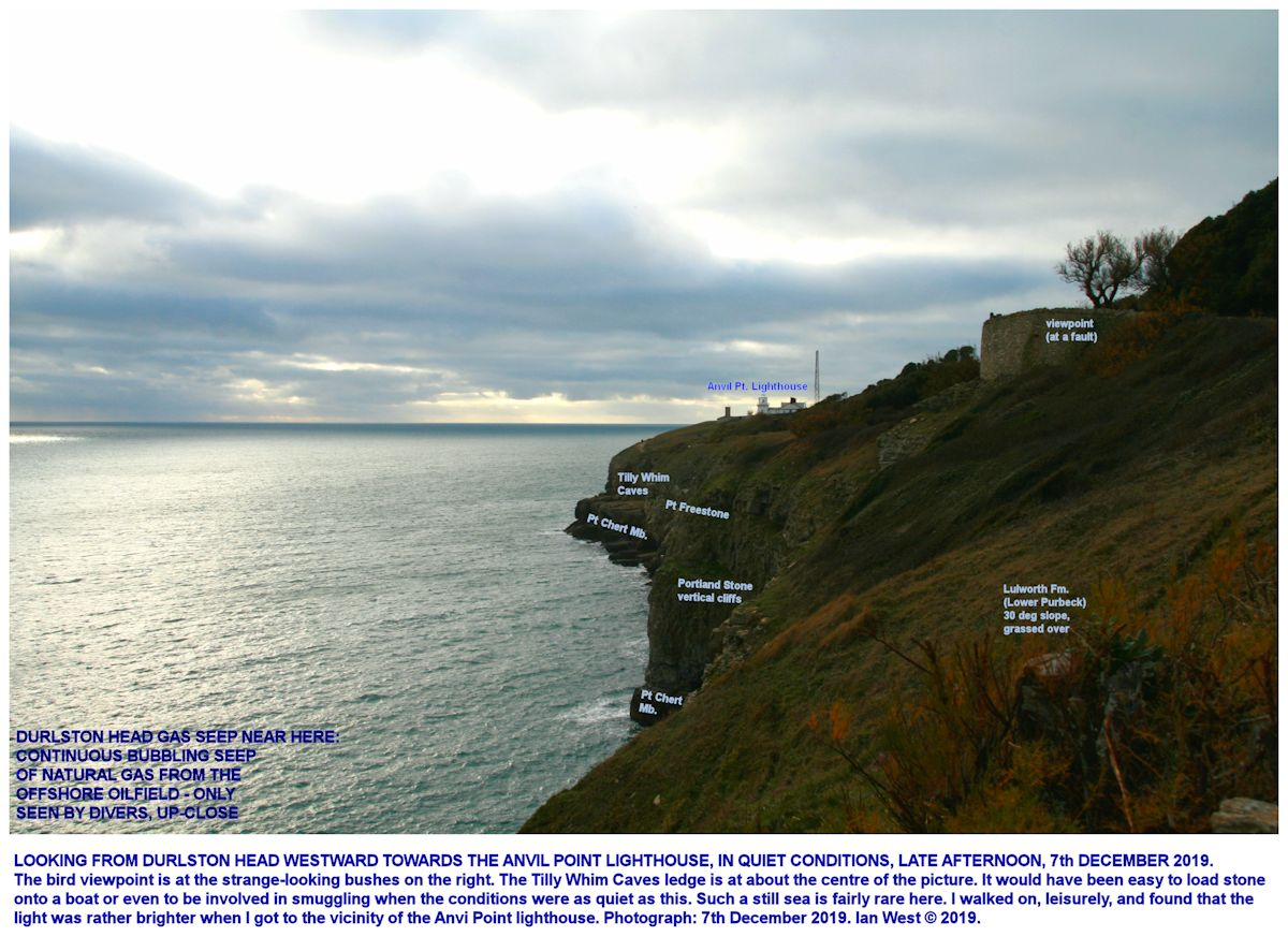 View westward from above Durlston Head, near the Great Globe, towards Tilly Whim Caves, December 2019, with labelling