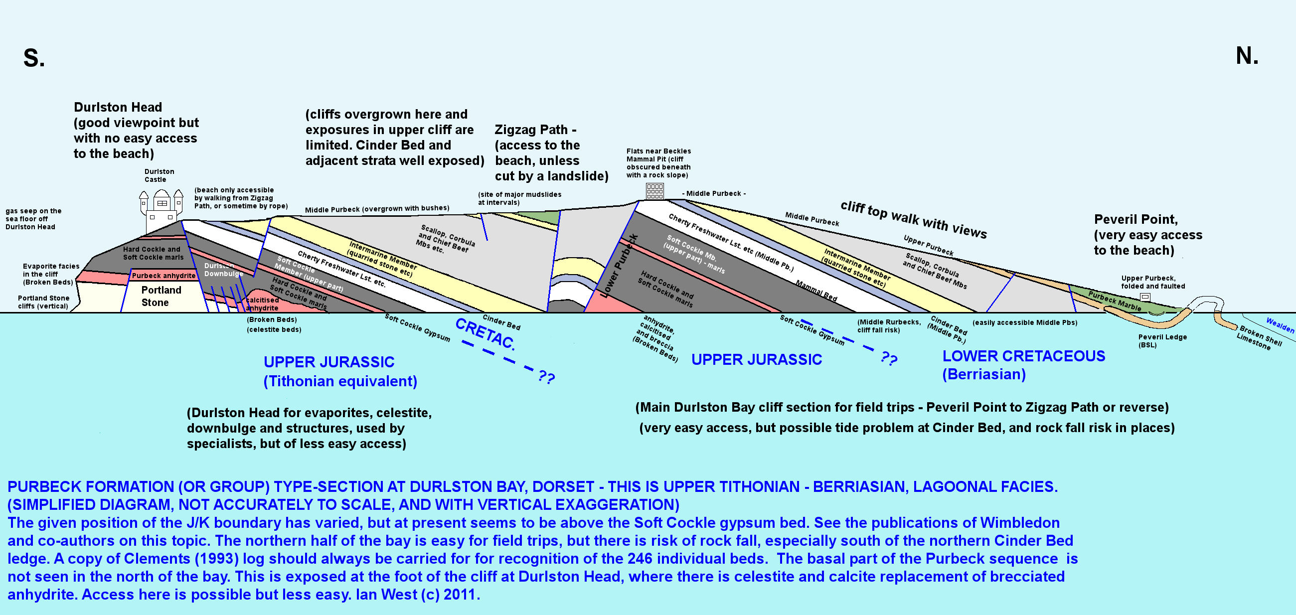 Durlston bay swanage dorset england peveril point geology a simplified cliff section of durlston bay dorsetj showing the purbeck type section pooptronica Image collections
