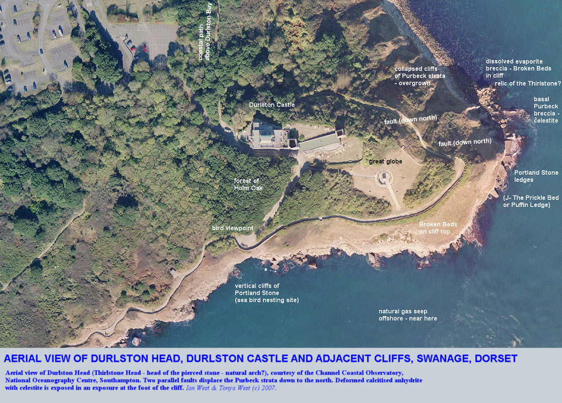 Durlston Head, Dorset, aerial photograph courtesy of the Channel Coastal Observatory