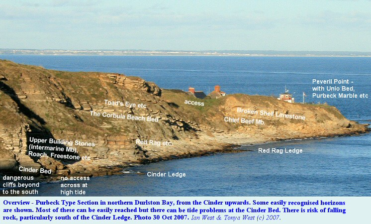 An overview of the Middle to Upper Purbeck section in Durlston Bay, Dorset, from the Cinder Bed Ledge northward towards Peveril Point, 2007