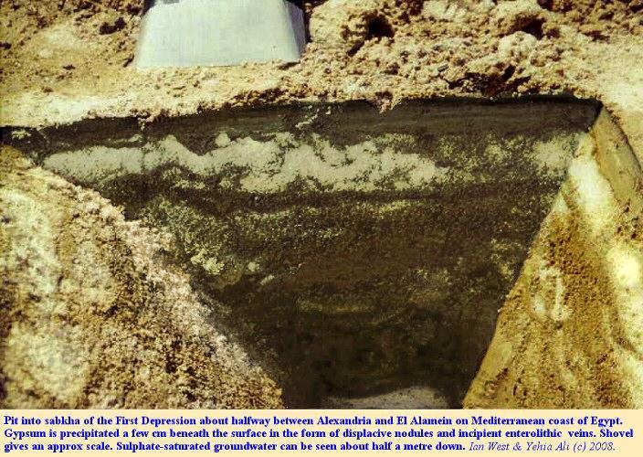 Displacive gypsum forming incipient enterolithic veins, sabkha of the First Depression, El Hammam, between Alexandria and El Alamein, northern Egypt, 1978