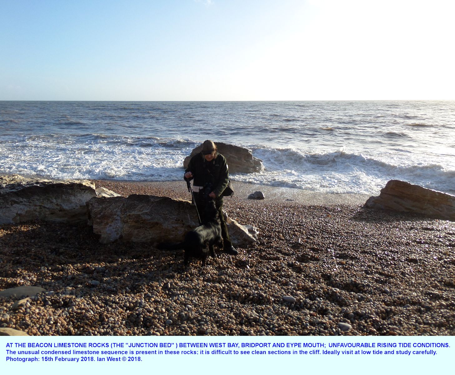 Fallen blocks of Toarcian, Upper Lias, Beacon Limestone or Junction Bed, partly in the sea, with a rising tide, location near Eype Mouth, west of Bridport, Dorset, February 2018, with Ian West
