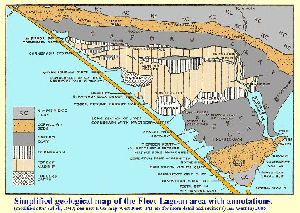 Simplified geological map of the Fleet Lagoon area, Dorset, with annotations