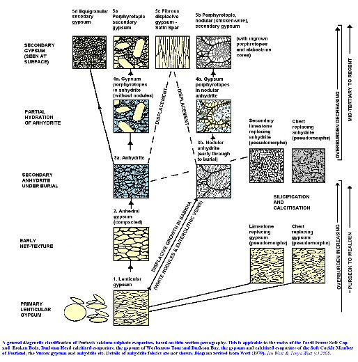 A general diagenetic classification of the Purbeck calcium sulphate evaporites of Dorset and Sussex, based on thin-section petrography