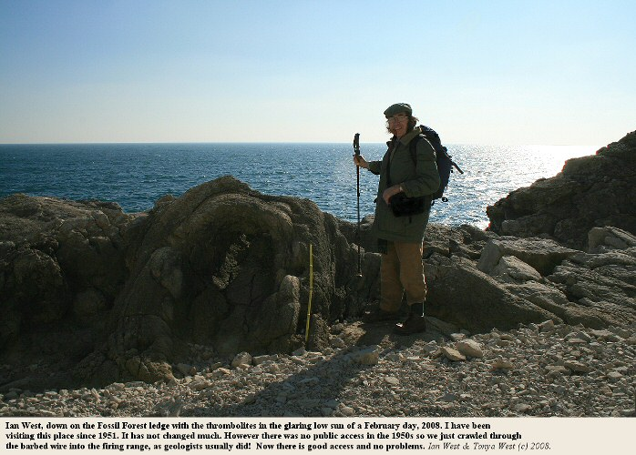 Ian West at the Fossil Forest ledge with thrombolites, east of Lulworth Cove, Dorset, 2008