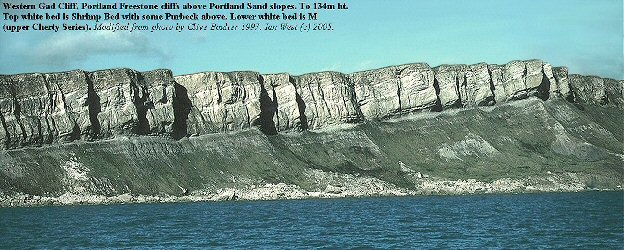 Western part of Gad Cliff, Dorset, from the sea, showing Portland Freestone above slopes of Portland Sand