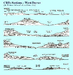 West Dorset cliff sections - general