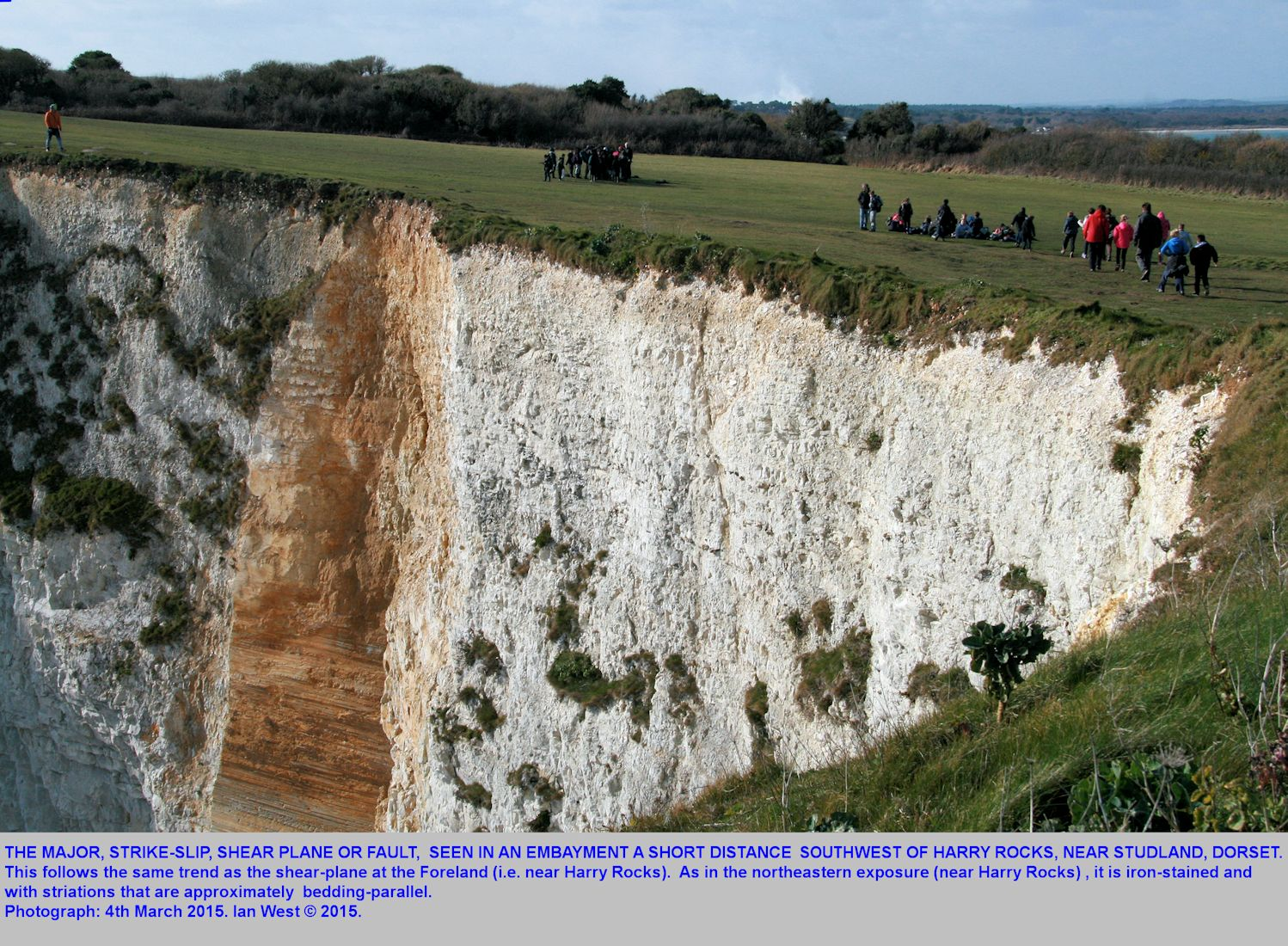 Strike-slip fault with well-defined shear plane, southwest of Harry Rocks, near Studland, Dorset, March 2015