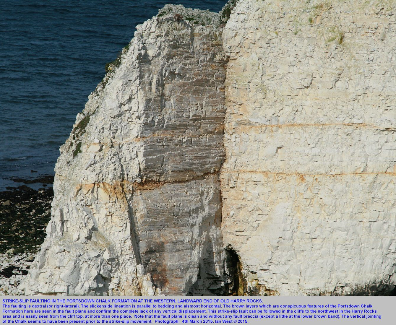 Strike-slip faulting seen at the western end of Old Harry Rocks, Dorset, March 2015
