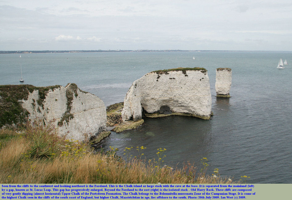 The Foreland or No Man's Land and Old Harry Rock, Dorset, seen from the cliffs to the southwest, 20th July 2009