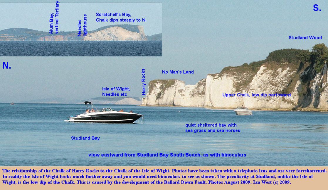 Relationship of the Chalk in the Studland Bay and Harry Rocks, Dorset, area to that of the Chalk at the Needles in the Isle of Wight