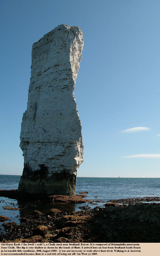 A view from the beach of the Chalk stack - Old Harry Rock, Dorset, 20 August 2009