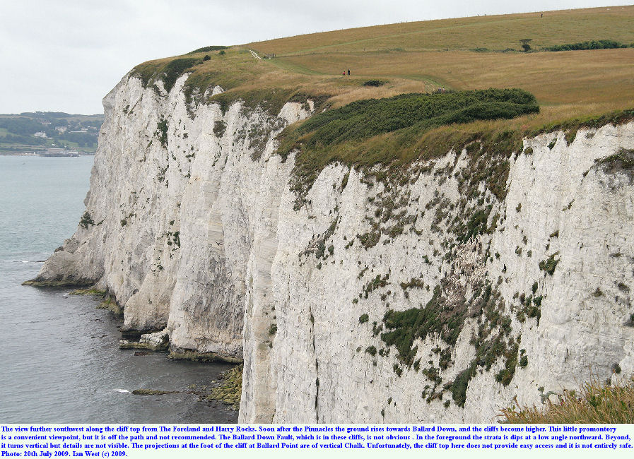 High cliffs of Chalk south of The Pinnacles and extending to Ballard Point, near Harry Rocks, Dorset