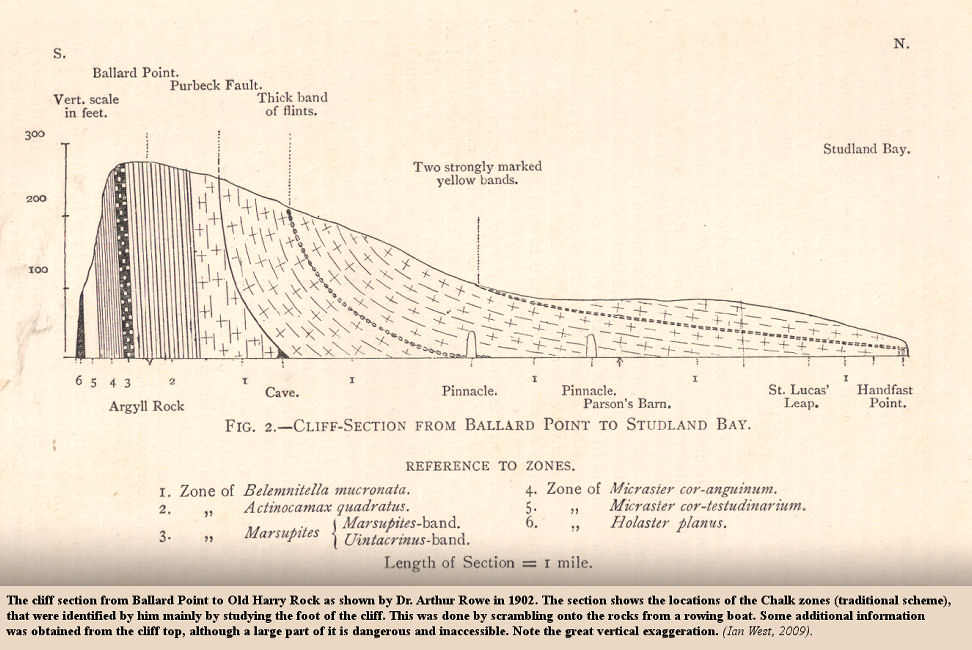 Dr. Arthur Rowe's (1902) cliff section from Ballard Point to Old Harry Rocks, Dorset, with traditional Chalk zones shown