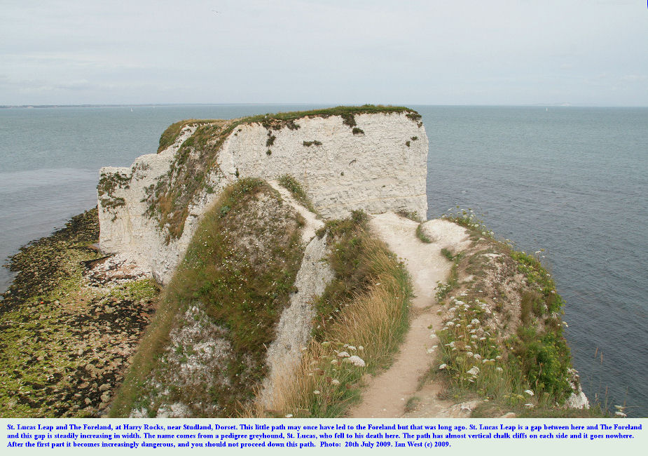 St. Lucas's Leap, the gap between the mainland and The Foreland or No Man's Land at Old Harry Rocks, Dorset, seen from cliff top, 20th July 2009