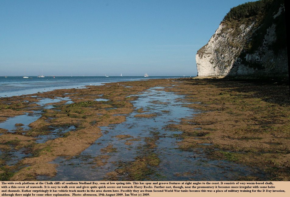 The wide rock platform at the southern part of Studland Bay, Dorset, cut into Upper Chalk and extensively bored by worms, photo - 19th August 2009