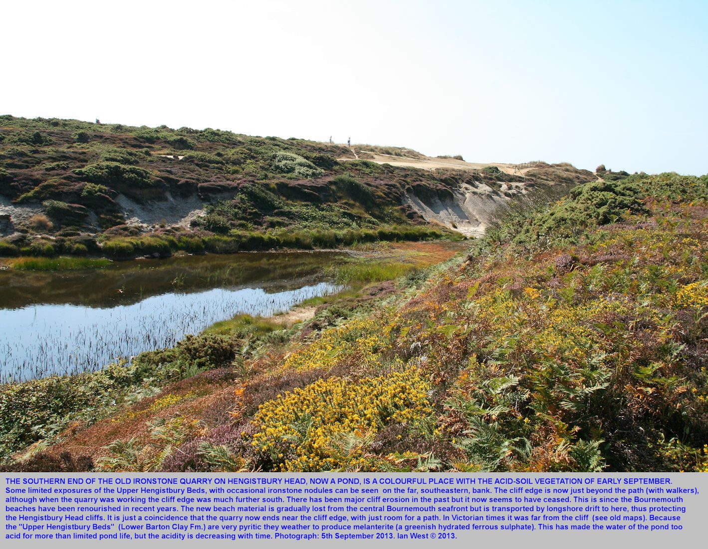 The southern part of the quarry pond in the centre of Hengistbury Head, Bournemouth, Dorset, seen with colourful vegetation in September 2013