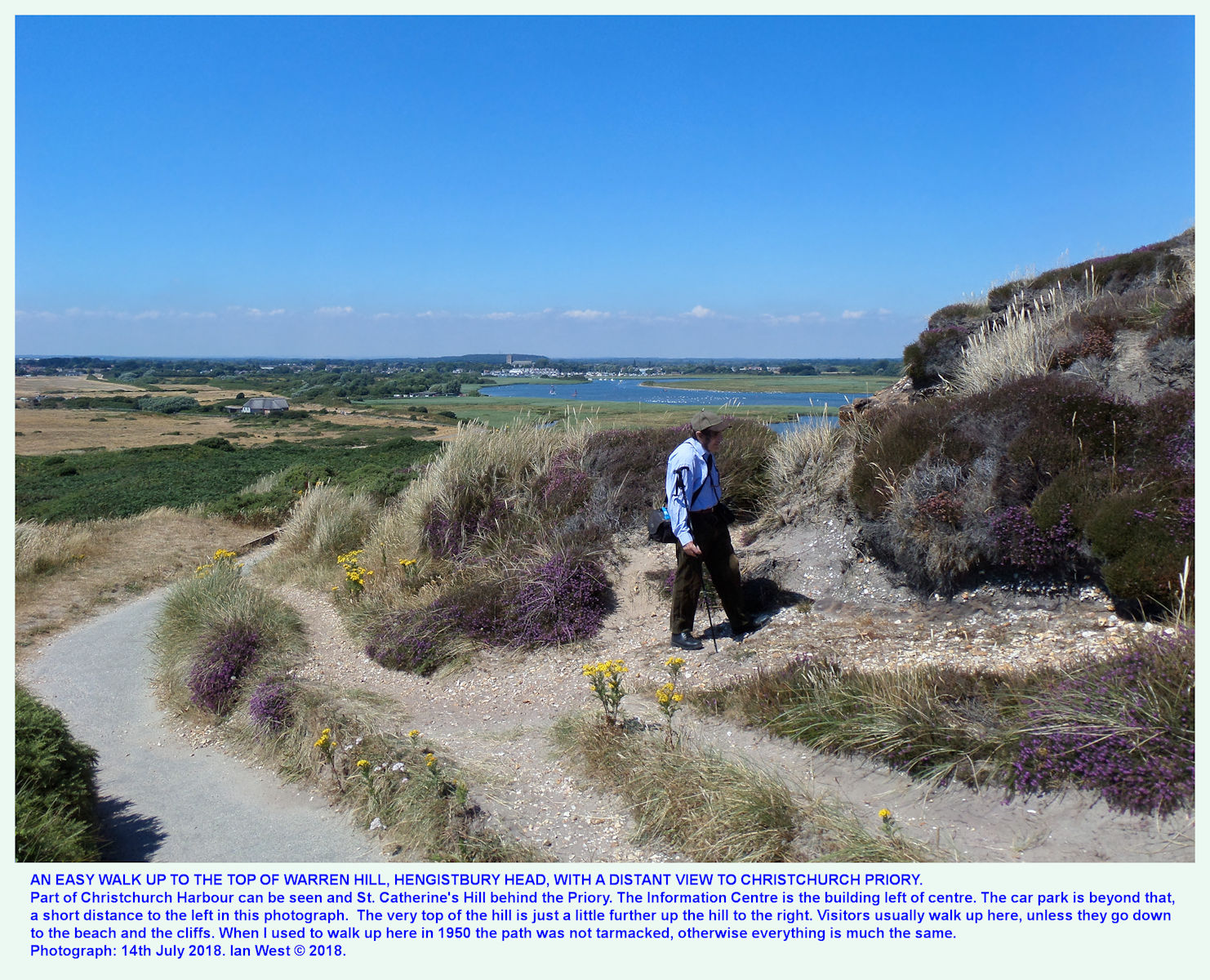 Almost at the top of the main path to the highest point of Warren Hill, Hengistbury Head, 14th July 2018