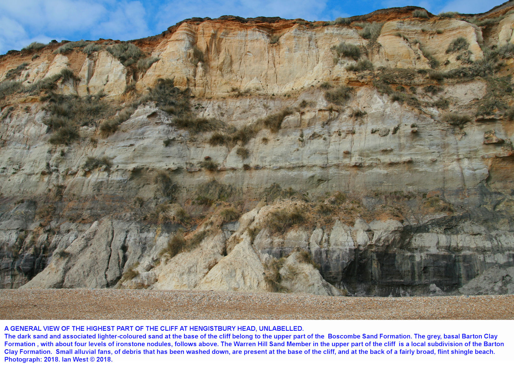 A general view of the near-vertical cliff at Hengistbury Head, Dorset, highest part - new - computer transfer check, new system, 16 June 2018