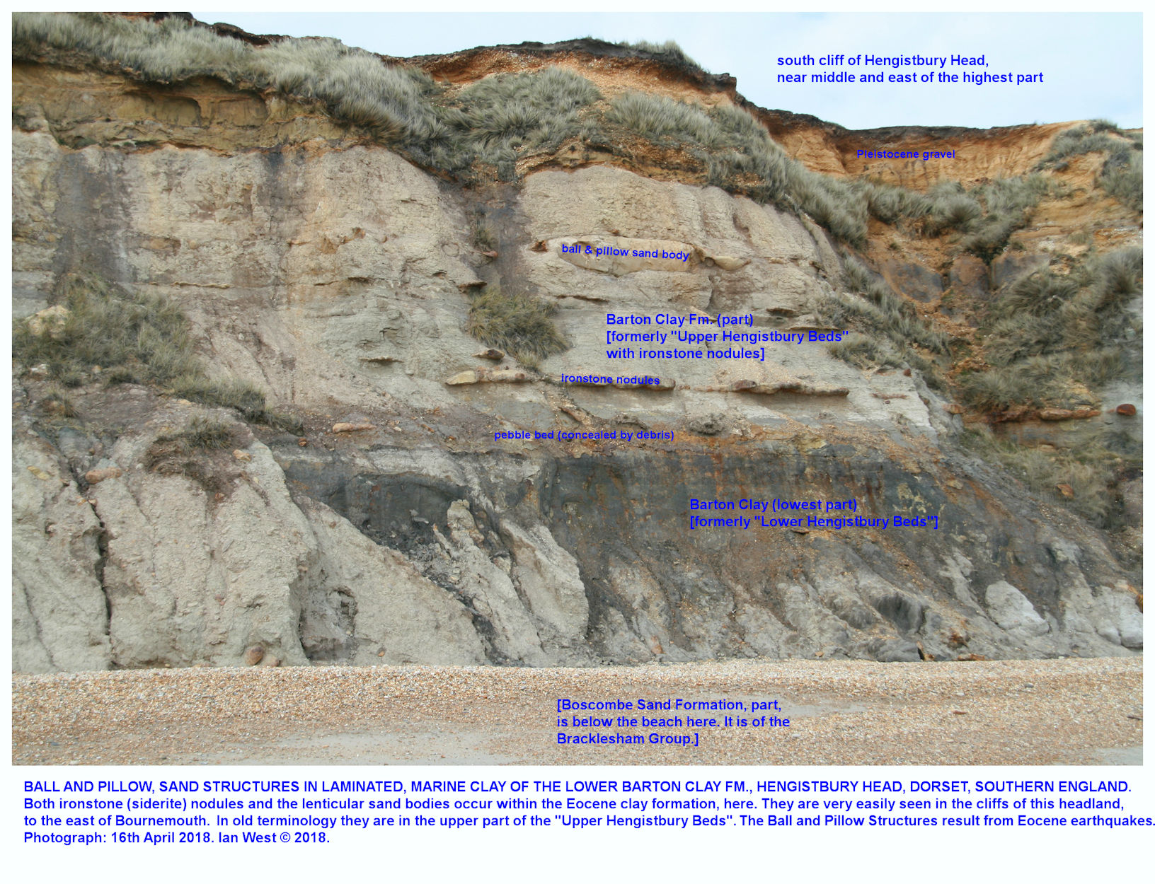 Ball and pillow structure shown by sandstone in a matrix of laminated, grey, Barton Clay, also with numerous ironstone or siderite nodules, Hengistbury Head, 16th April 2018, formerly Upper Hengistbury Beds over Lower Hengistbury Beds