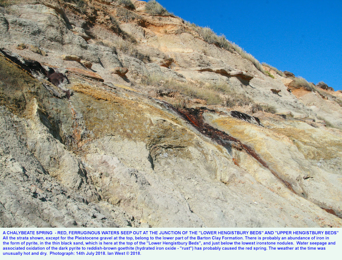 The location of a very acid spring on the main, south, main cliff of Hengistbury Head, Dorset