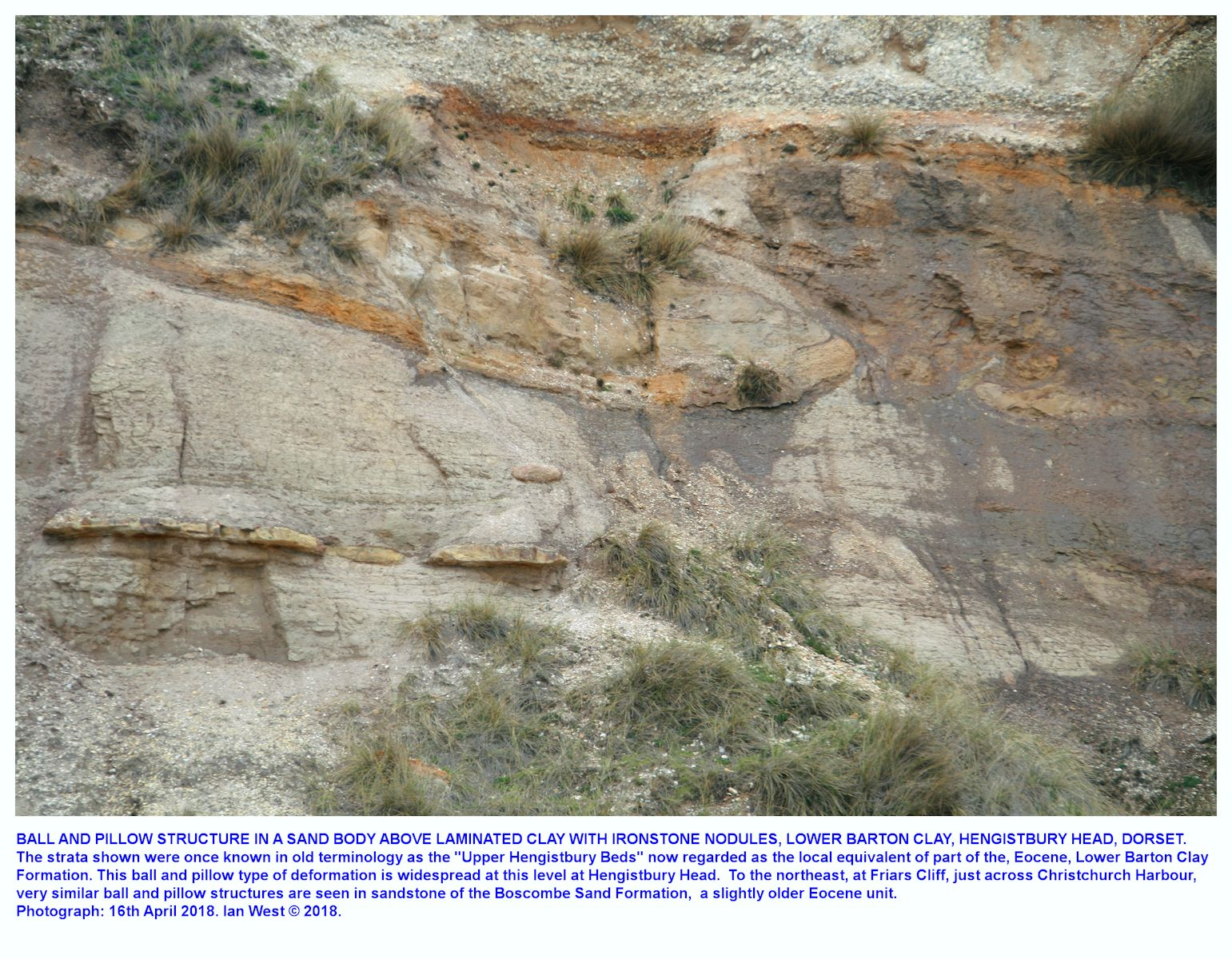 The top two bands,  4 and 5, in the laminated, silty, lower Barton Clay near the south-facing, eastern end of Hengistbury Head, Bournemouth, Dorset, and also showing an overlying sand body with ball and pillow type of liquifaction features, upper part of cliff only, April 2018