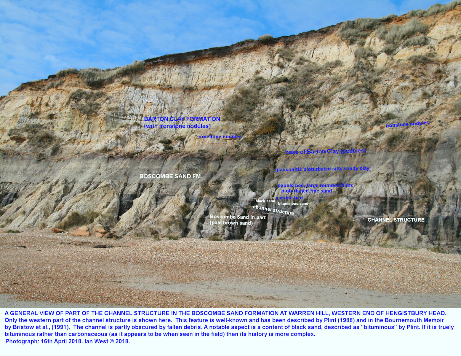 The Eocene, Boscombe Sand Formation at the base of the cliff at Hengistbury Head, Bournemouth, Dorset, showing a notable channel deposit, described by Plint and other authors