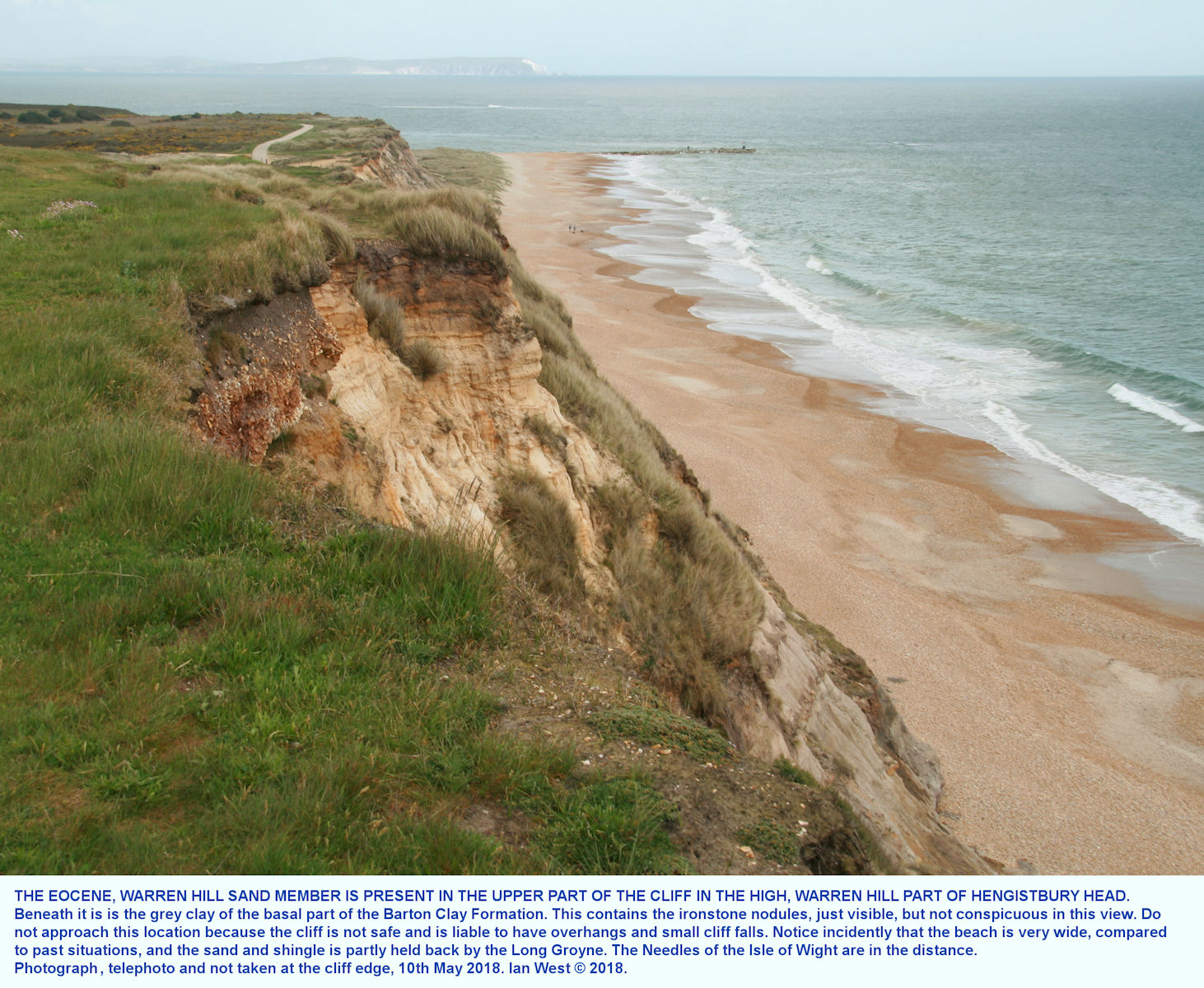 The Warren Hill Sand Member of the Barton Clay Formation, is present in the top of the sea cliffs of Warren Hill, in the western part of Hengistbury Head, Bournemouth, Dorset, but the location is not safe and should not be approached, photograph 10th May 2018