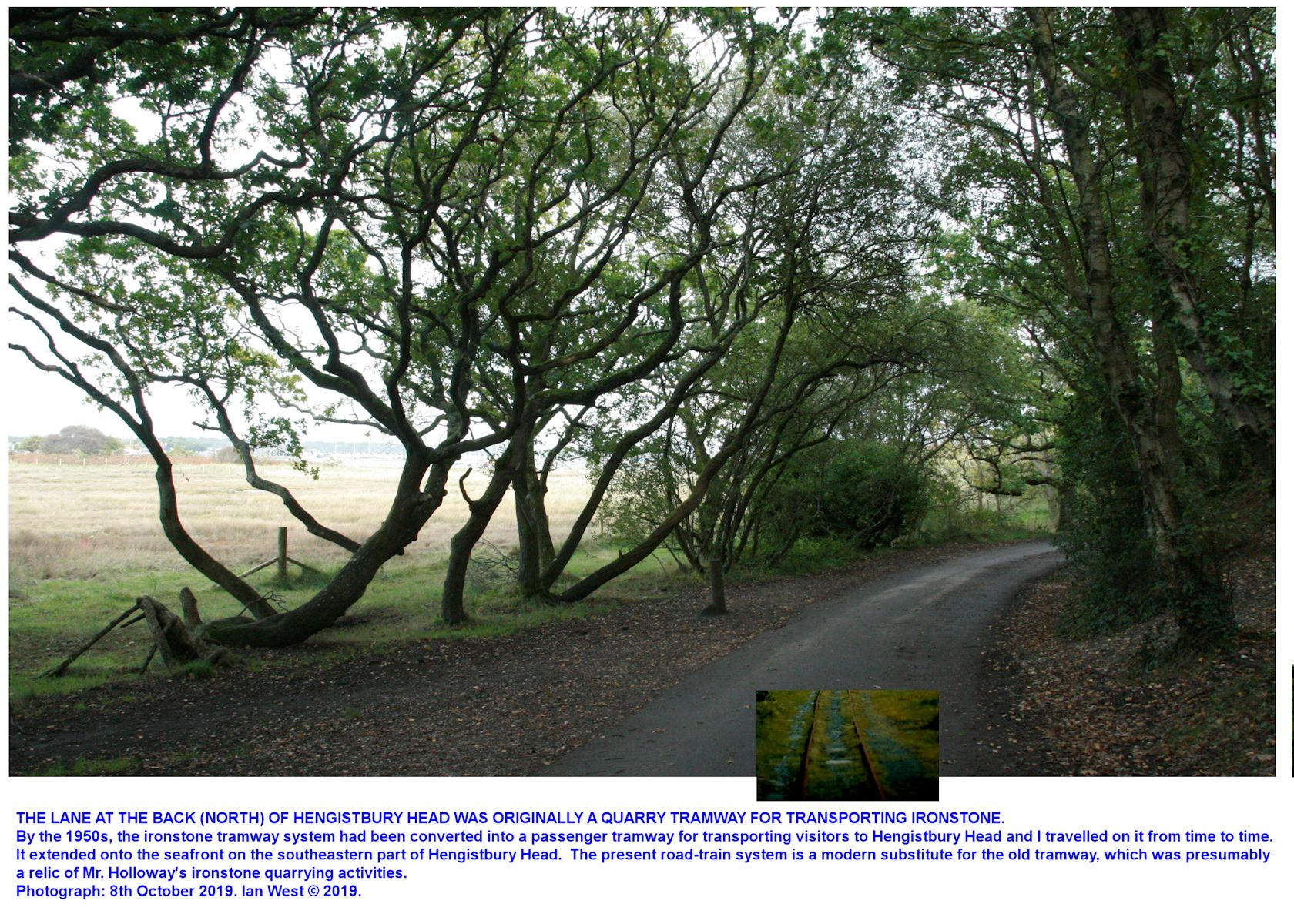 The wooded lane on the north side of Hengistbury Head was originally a tramway track with rails, and was used for transporting ironstone