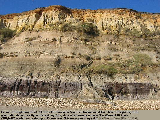 The cliff at Hengistbury Head, Bournemouth, Dorset, central part, showing Eocene strata