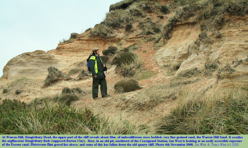 Exposure of the Warren Hill Sand, Eocene, northwest of the Coastguard Hut, Warren Hill, Hengistbury Head, Bournemouth, Dorset, November 2008