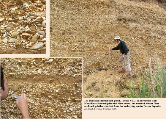 Pleistocene fluvial gravels at Brownwich Cliff, northwest of Hill Head, Hampshire, Solent coast