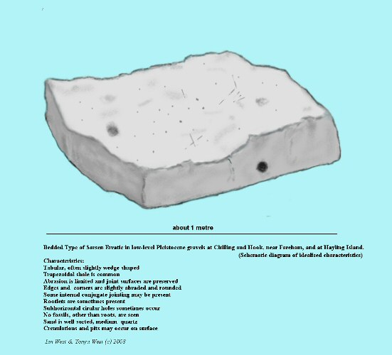 The general characteristics of the bedded type of quartzite sarsen stones present in the Pleistocene gravels of Chilling and Brownwich Cliffs, Solent coast, near Fareham, Hampshire, and at Hayling Island, very generalised
