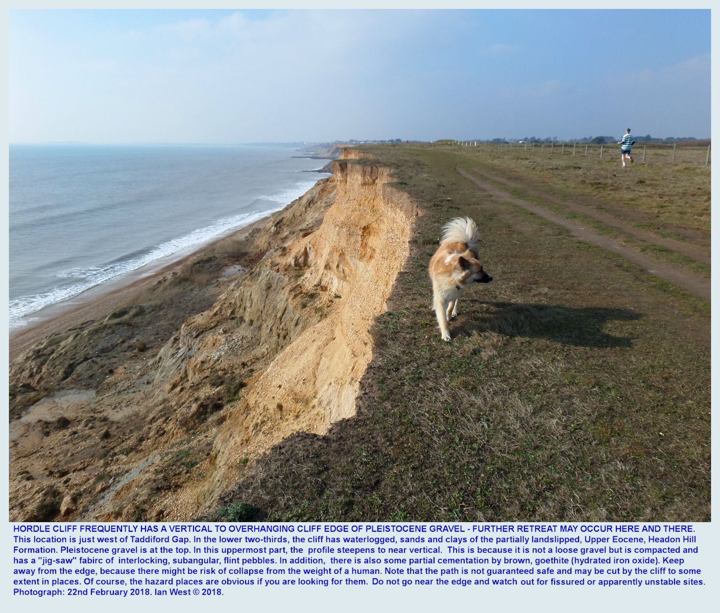 Pleistocene gravel over clays and sands of the Eocene, Headon Hill Formation Hordle Cliff, Hampshire, with a dog, 22nd February, 2018