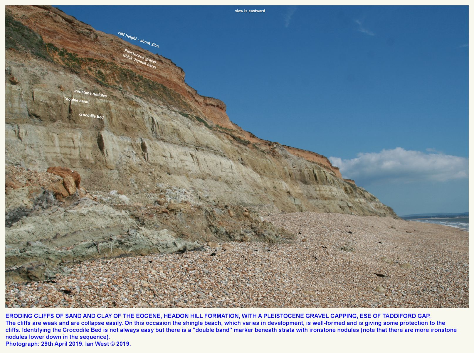 The main cliff section to the ESE of Taddiford Gap showing the Crocodile Bed and other strata, Hordle Cliff, Hampshire, 2019